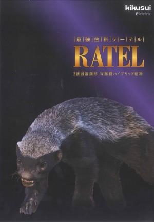 kikusuira-teru